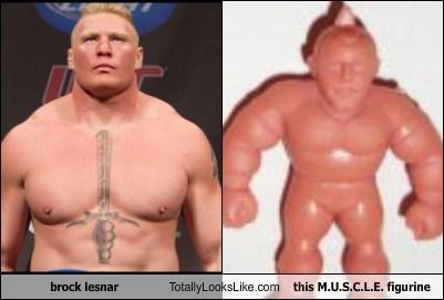 toys,totally looks like,funny,wrestling,Brock Lesnar