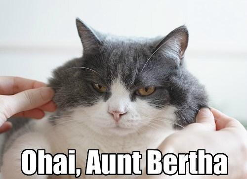 cheeks,pinchy,grumpy,aunt,funny