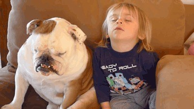 dogs,kids,cute,parenting,naps,naptime