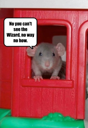 No you can't see the Wizard, no way no how.