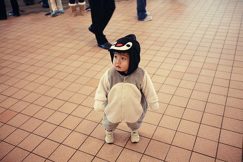 Just When You Thought Penguins Couldn't Get Any Cuter