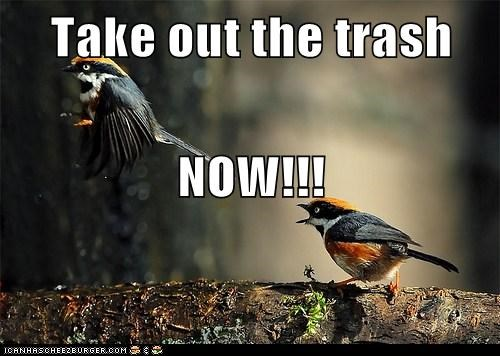 Take out the trash NOW!!!