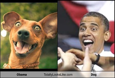 Obama Totally Looks Like Dog