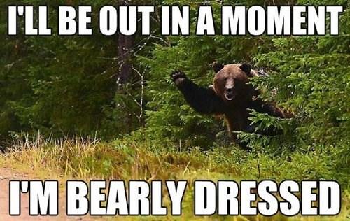 Never Nude Bear Is Modest