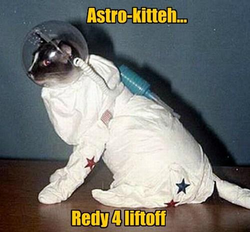 Astro-kitteh...