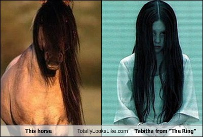 "This horse Totally Looks Like Tabitha from ""The Ring"""