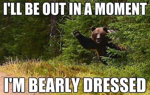 pun,bear,dressed