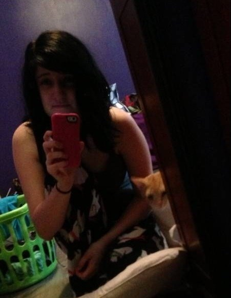 photobomb,cute,selfie,Cats,funny,kitten