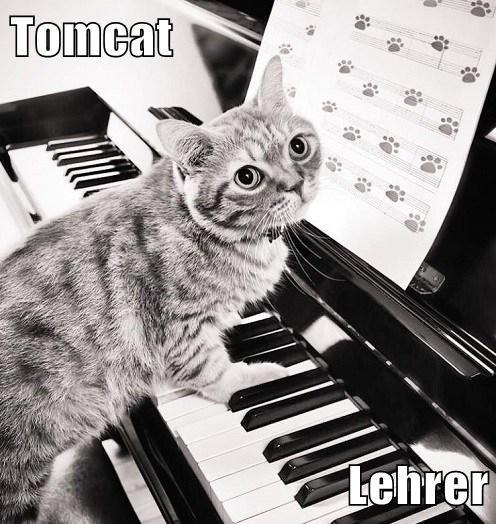 Tomcat  Lehrer