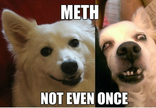 Not Even Once,drugs