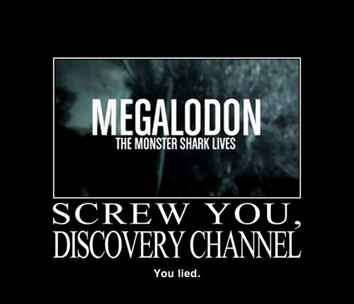 megalodon,discovery channel,jerks,funny