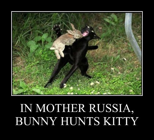 IN MOTHER RUSSIA, BUNNY HUNTS KITTY