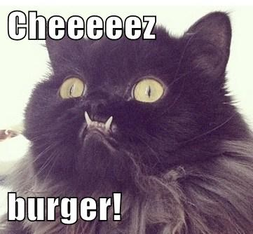 Cheeeeez  burger!