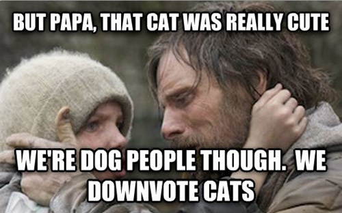 Down (Vote) the Cats