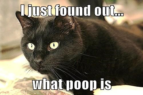 I just found out...  what poop is