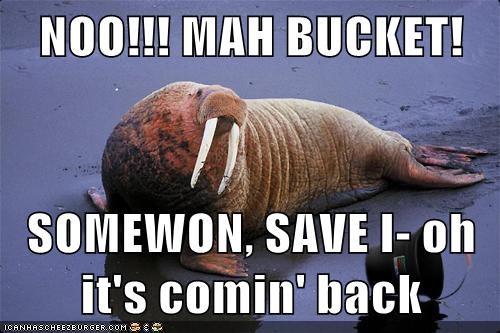 NOO!!! MAH BUCKET!  SOMEWON, SAVE I- oh it's comin' back