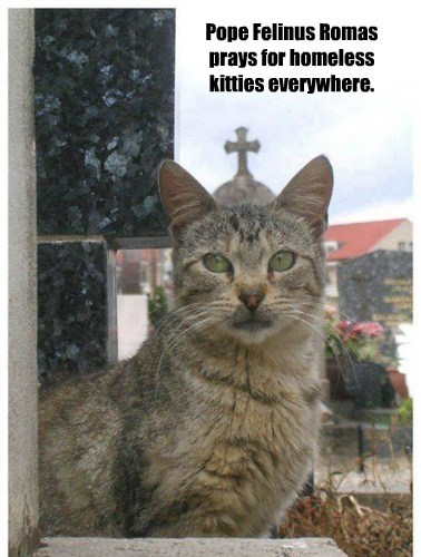 Pope Felinus Romas prays for homeless kitties everywhere.