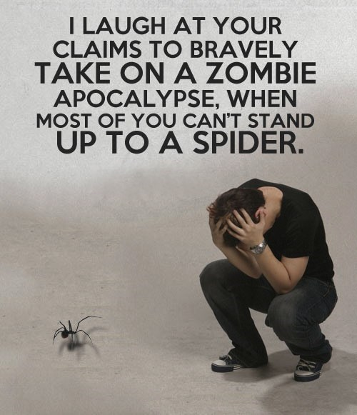 We Would All Be Doomed if There Was a Spider Apocalypse
