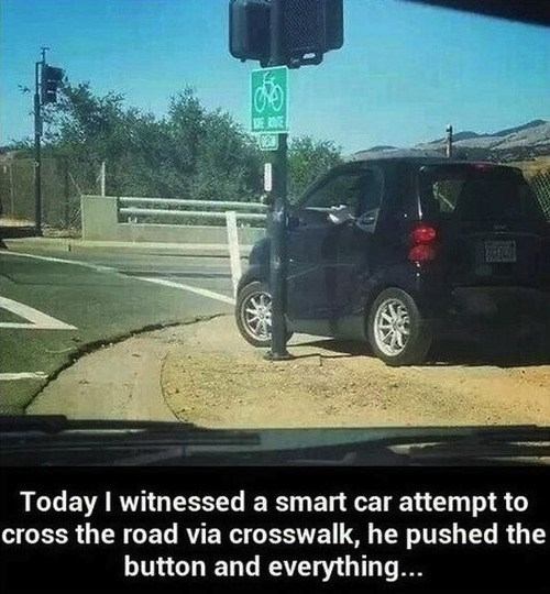 Smart Guys Drive Smart Cars