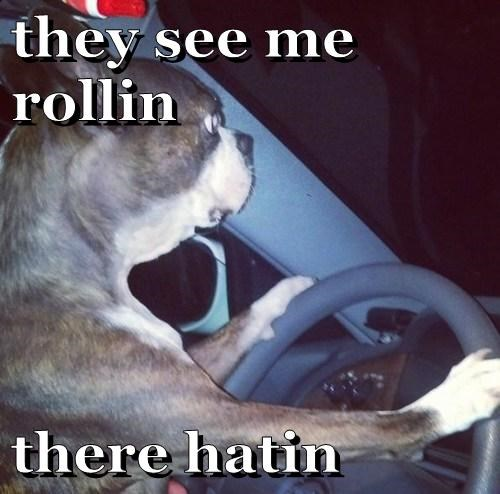 they see me rollin  there hatin