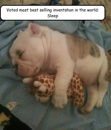 Voted most best selling inventshon in the world: Sleep
