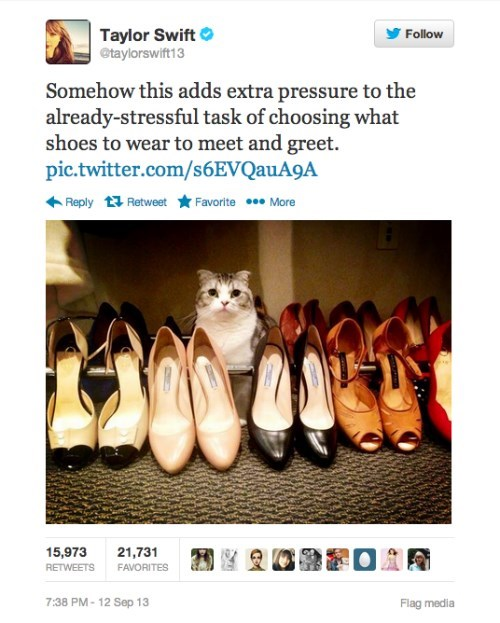 Taylor's Cat Prefers Sling Backs to Pumps