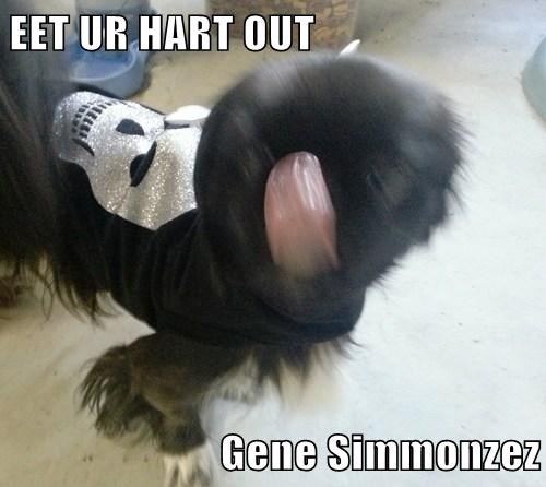 EET UR HART OUT  Gene Simmonzez