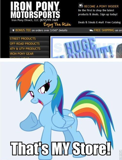 It's Where All The Wonderbolts Shop