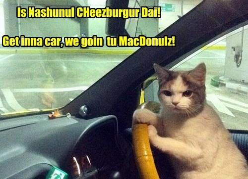 Is Nashunul CHeezburgur Dai!  Get inna car, we goin  tu MacDonulz!