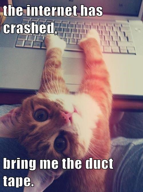Fix-it Cat to the Rescue!