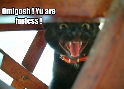 Omigosh ! Yu are furless !