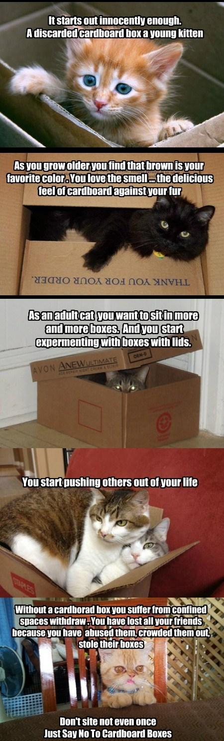 Just Say No To Cardboard  Boxes