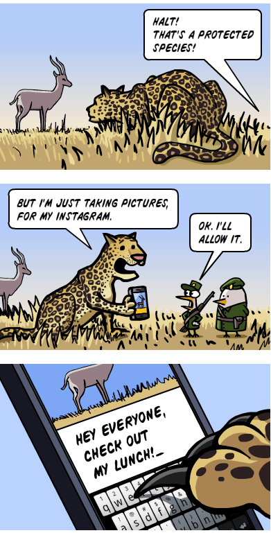 nature,instagram,food,funny,web comics,g rated,AutocoWrecks