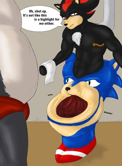 wtf,shadow,funny,toilets,sonic