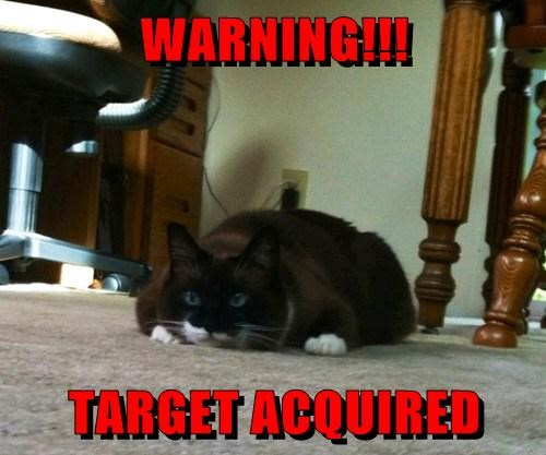 WARNING!!!  TARGET ACQUIRED