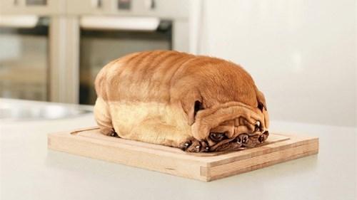 A Pug Loaf