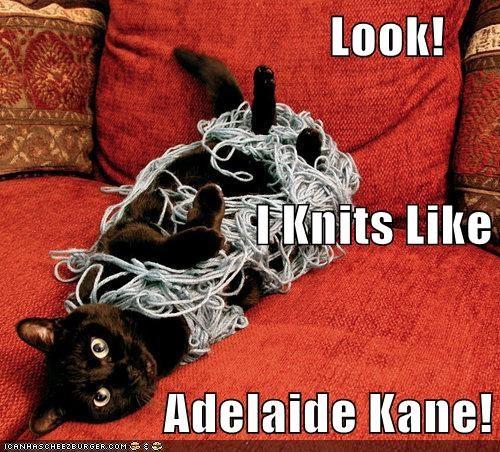 Adelaide Kane's #1 Feline Fan!