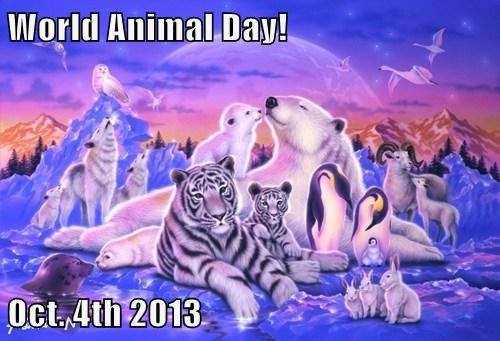 World Animal Day!  Oct. 4th 2013