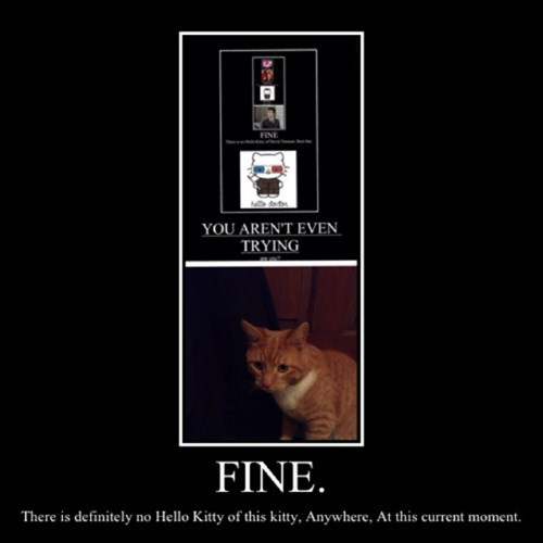 cat,rule hk,hello kitty,funny