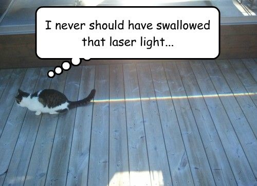 I never should have swallowed that laser light...