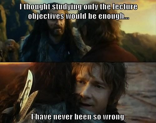 I thought studying only the lecture objectives would be enough...  I have never been so wrong.