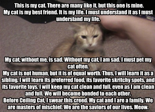 Cat Person's Creed