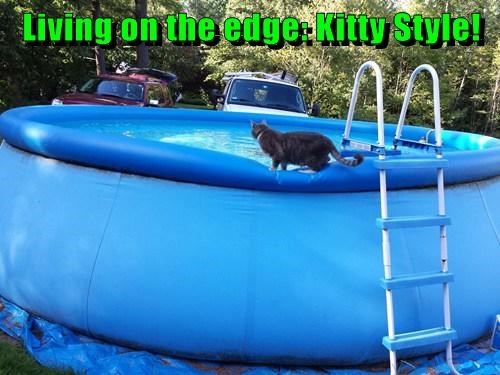 Living on the edge: Kitty Style!