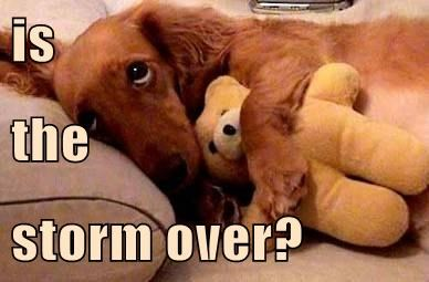 is the storm over?