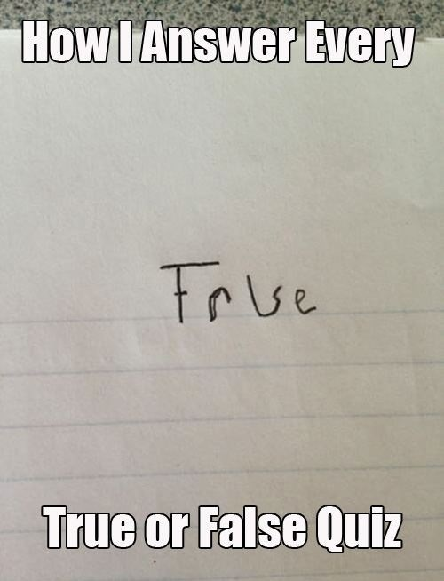 quizzes,true or false