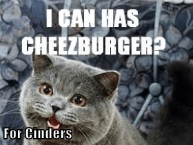For Cinders