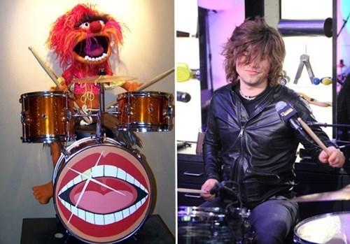 muppets,drummer,Hanson,animal