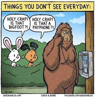 pager,loch ness monster,pay phone,big foot,web comics