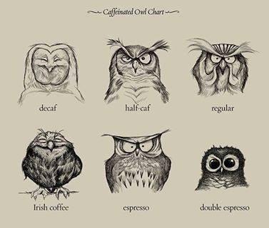 caffeine,charts,owls,coffee,web comics