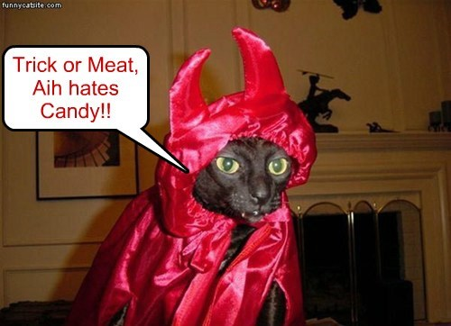 Trick or Meat, Aih hates Candy!!